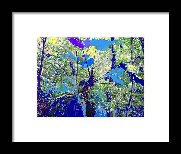 Framed Print featuring the photograph Blue Jungle by Ian MacDonald