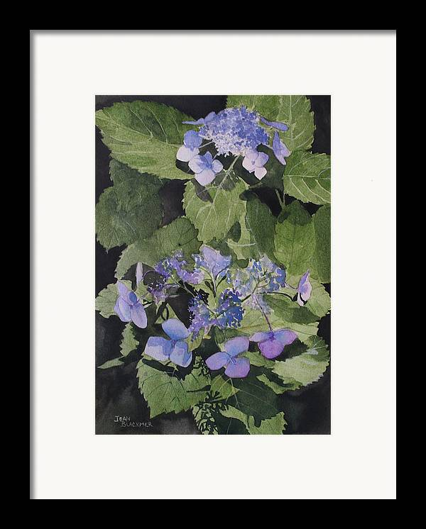 Flowers Framed Print featuring the painting Blue Lace by Jean Blackmer