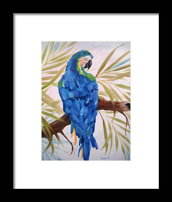 Wild Animal Exotic Bird Blue Macaw Tropical Framed Print featuring the painting Blue Macaw by Sherry Winkler