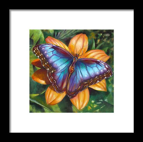 Blue Morpho Butterfly Framed Print by Nancy Tilles