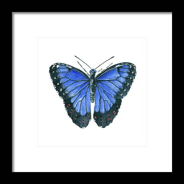 Blue Morpho Butterfly Watercolor Painting Framed Print by Katerina ...