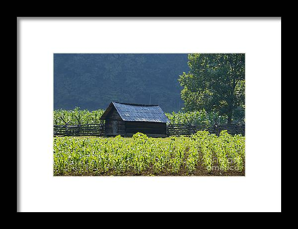 Farm Framed Print featuring the photograph Blue Mountain Farm by David Lee Thompson