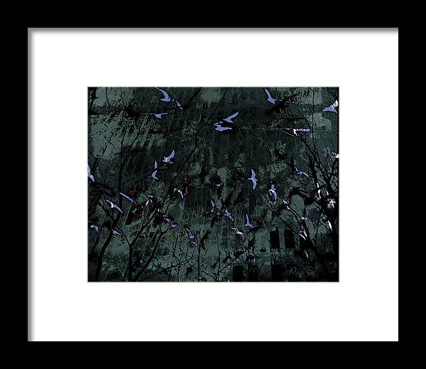 Digital Photography Framed Print featuring the photograph Blue Pool Reflection by Tony Wood