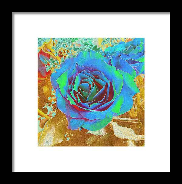 Rose Framed Print featuring the photograph Blue Rose by Addie Hocynec