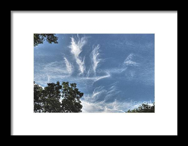 Spring Framed Print featuring the photograph Blue Skies by Chris Fleming