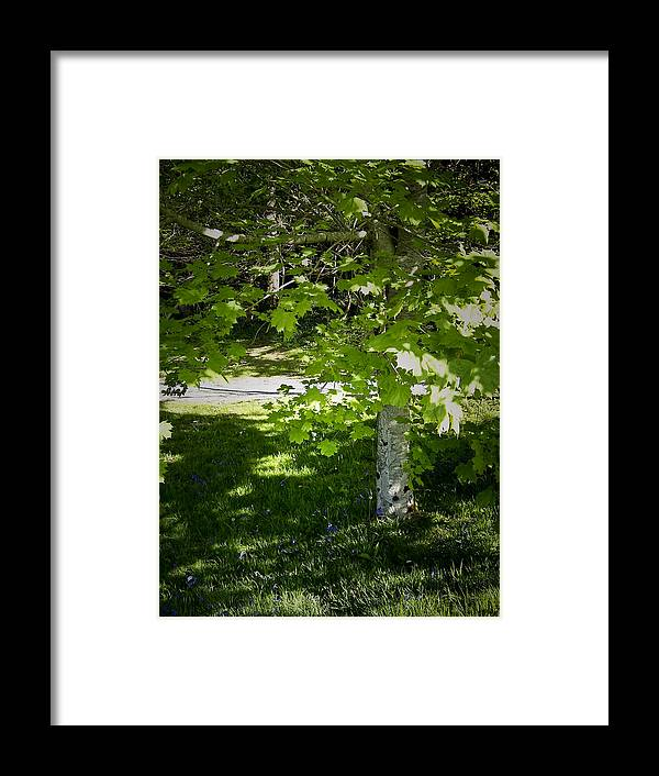 Irish Framed Print featuring the photograph Bluebells In Killarney National Park Ireland by Teresa Mucha