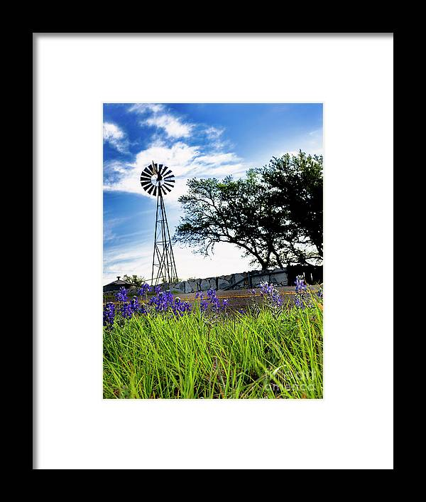 Hy 965 Framed Print featuring the photograph Bluebonnets With Windmill by Fred Adsit
