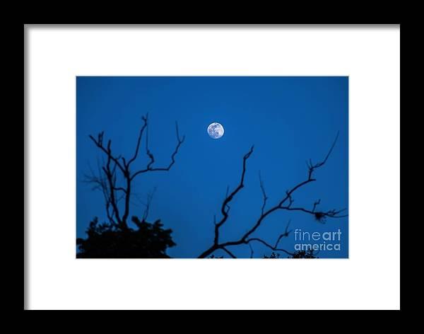 Framed Print featuring the photograph Bluemoon by John Huerta