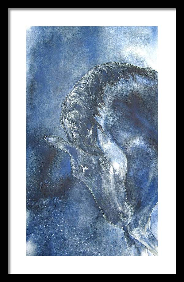 Horse Framed Print featuring the painting Blues by Barbara Widmann