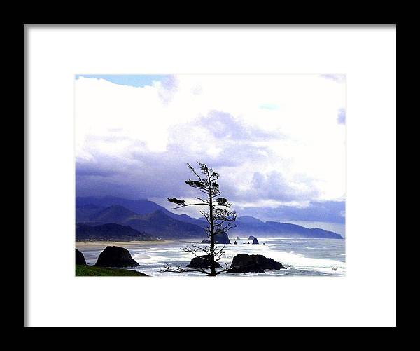 Blustery Framed Print featuring the photograph Blustery by Will Borden