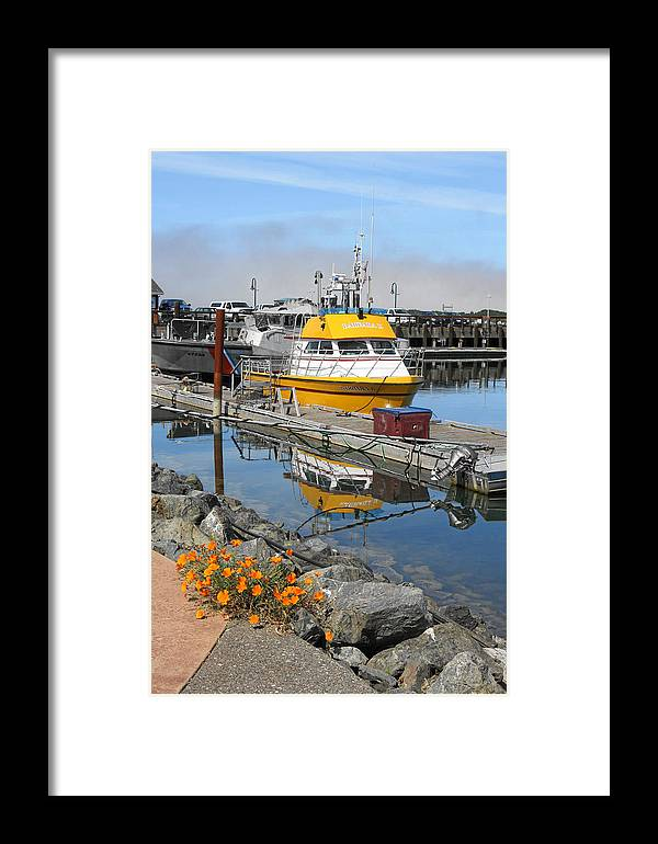 Boat Harbor Framed Print featuring the photograph Boat Harbor At Bandon by Alice Eckmann