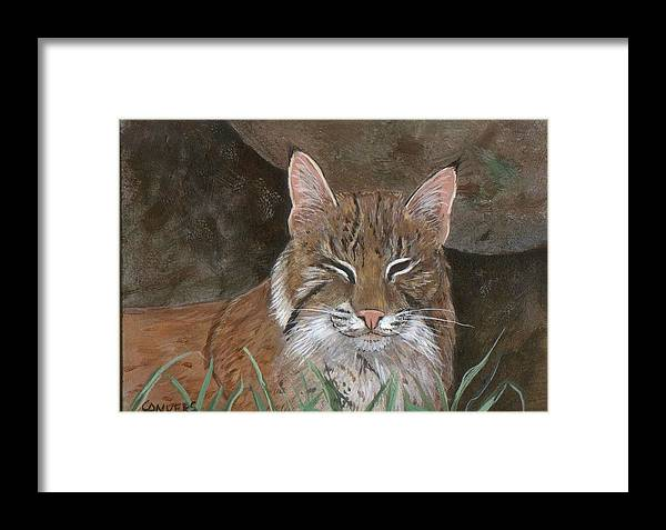 Cat Framed Print featuring the painting Bob Cat by Peggy Conyers