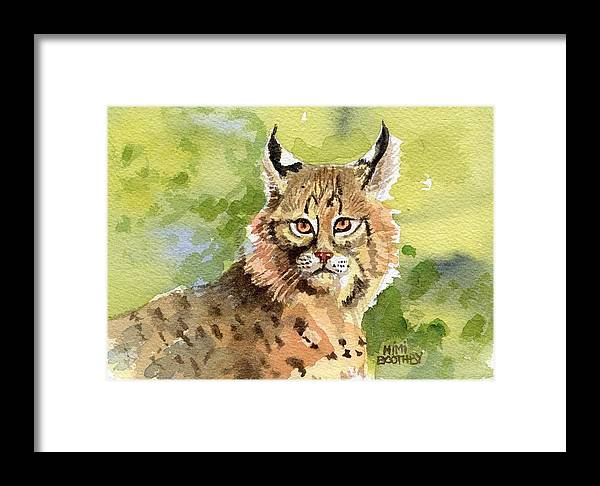 Bobcat Framed Print featuring the painting Bobcat by Mimi Boothby