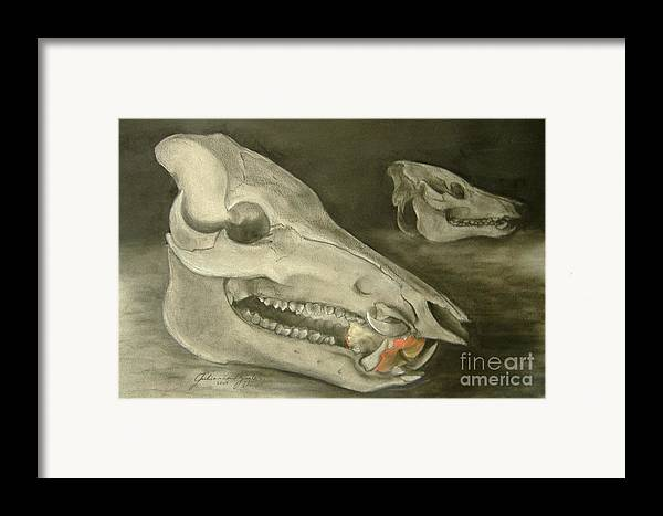 Pig Skull Framed Print featuring the drawing Bone Appetit by Julianna Ziegler