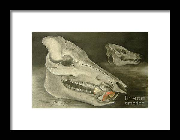 Pig Skull Framed Print featuring the drawing Bone Appetit by Julianna Ziegler
