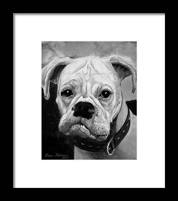 Boxer Framed Print featuring the painting Boo the Boxer by Portraits By NC