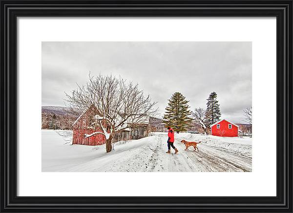 Bosley On Kendall Farm by Linda Pulvermacher