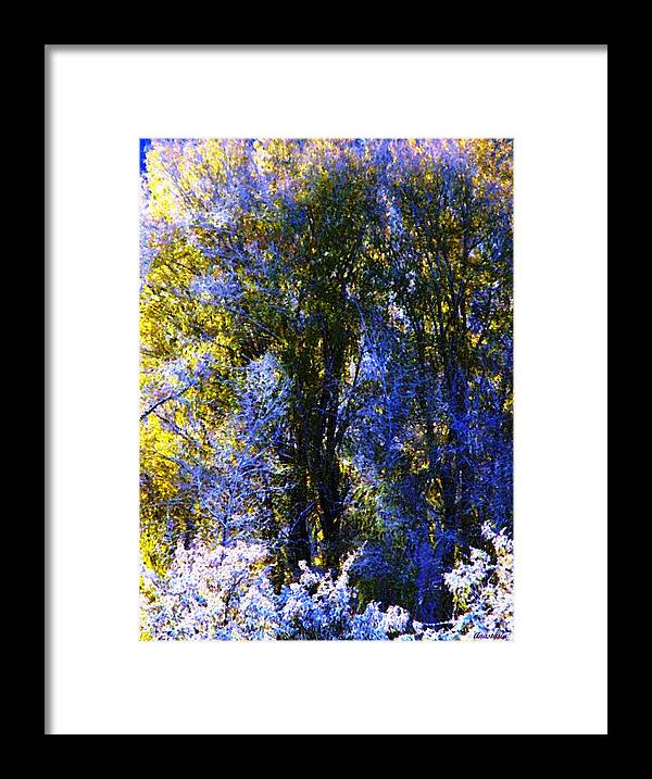A Dazzling Morning When The Snow Was Resembling A Lavender Lace Or Filigree On The Trees! Framed Print featuring the photograph Bosque Glow And Chantilly Snow by Anastasia Savage Ealy