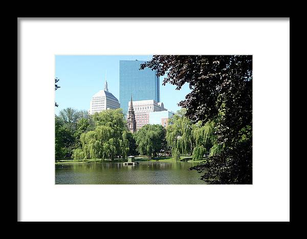 Garden Framed Print featuring the photograph Boston Public Garden by Kathy Schumann