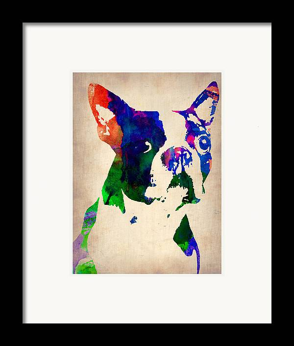 Boston Terrier Framed Print featuring the painting Boston Terrier Watercolor by Naxart Studio