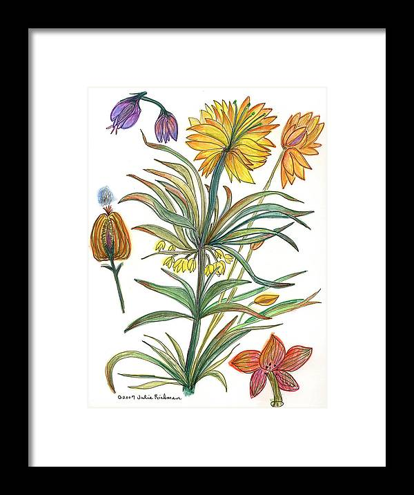 Flowers Nature Botany Watercolor Yellow Drawing Julie Richman Flora Pencil Framed Print featuring the painting Botanical Flower-53 Yellow Flower by Julie Richman