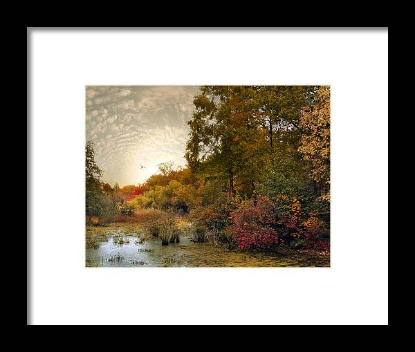 Autumn Framed Print featuring the photograph Botanical Wetlands by Jessica Jenney