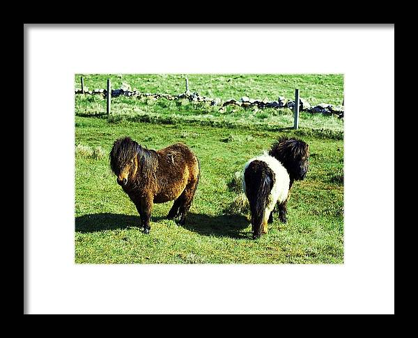 Pony Framed Print featuring the photograph Both Ends by HweeYen Ong