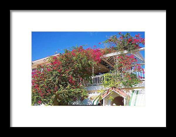 Flowers Framed Print featuring the photograph Bougainvillea Villa by Debbi Granruth