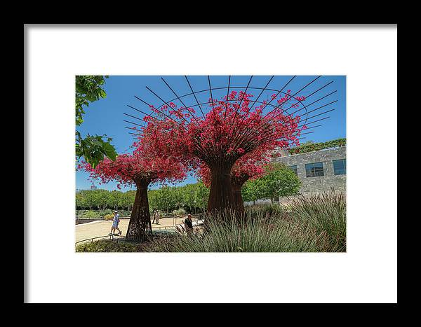Getty Center Framed Print featuring the photograph Bougainvilleas Tree Scultures by Michelle Choi