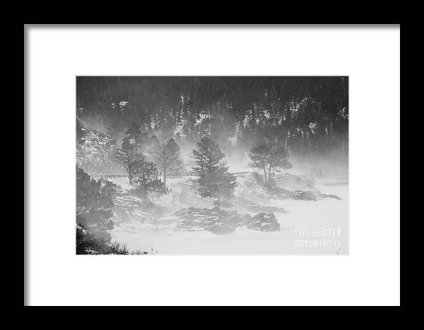 Winter Framed Print featuring the photograph Boulder Canyon And Nederland Winter Landscape by James BO Insogna