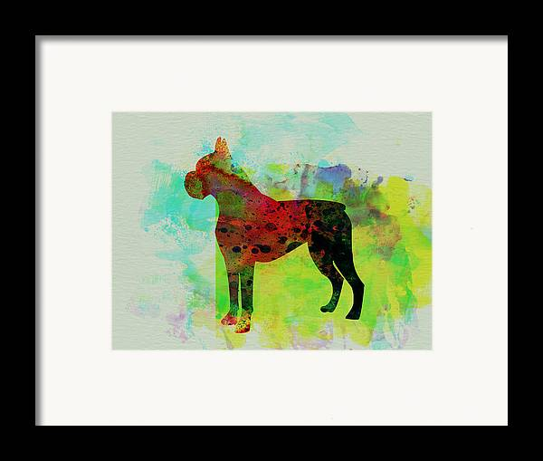 Boxer Framed Print featuring the painting Boxer Watercolor by Naxart Studio