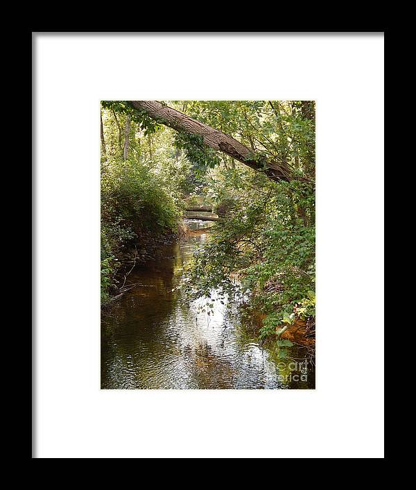 Photography Framed Print featuring the photograph Boyden Creek by Phil Perkins