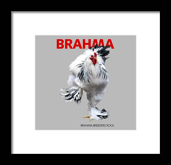 Brahma Framed Print featuring the digital art Brahma Breeders Rock RED by Sigrid Van Dort
