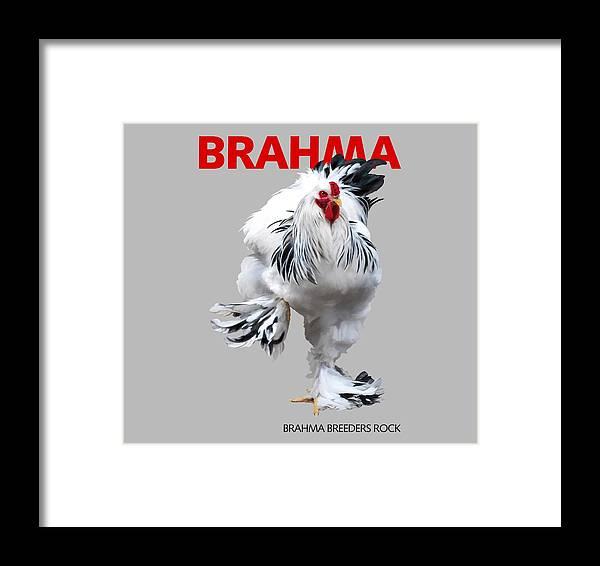 Brahma Framed Print featuring the digital art Brahma Breeders Rock Red by Sigrid Van Dort