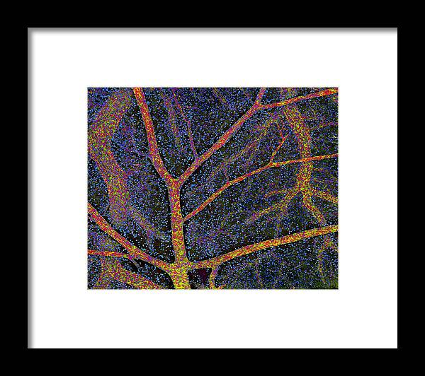 Hippocampus Framed Print featuring the photograph Brain Tissue Blood Supply by Thomas Deerinck, Ncmir