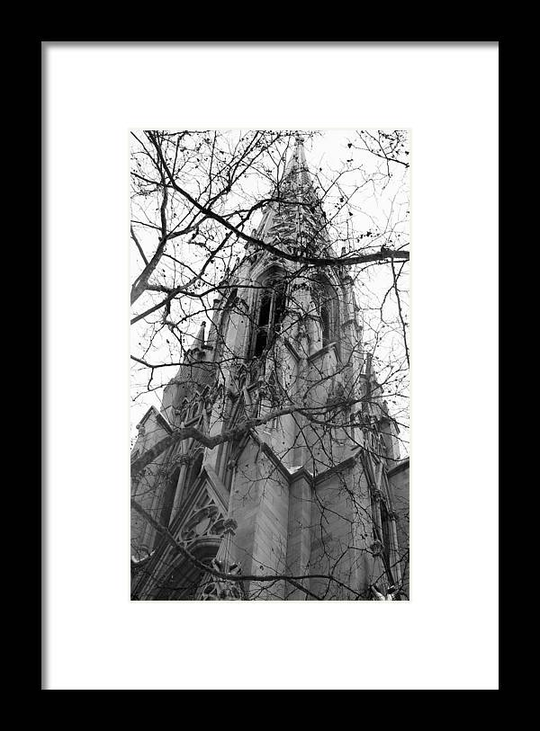 Church Framed Print featuring the photograph Branches Of Faith by Ashley Porter