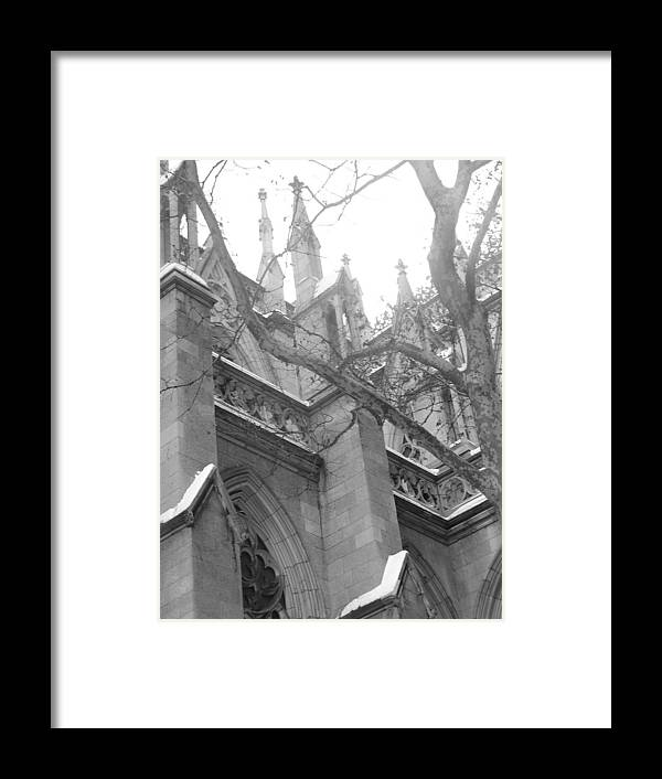 Church Framed Print featuring the photograph Branches Of Prayer by Kate Collins