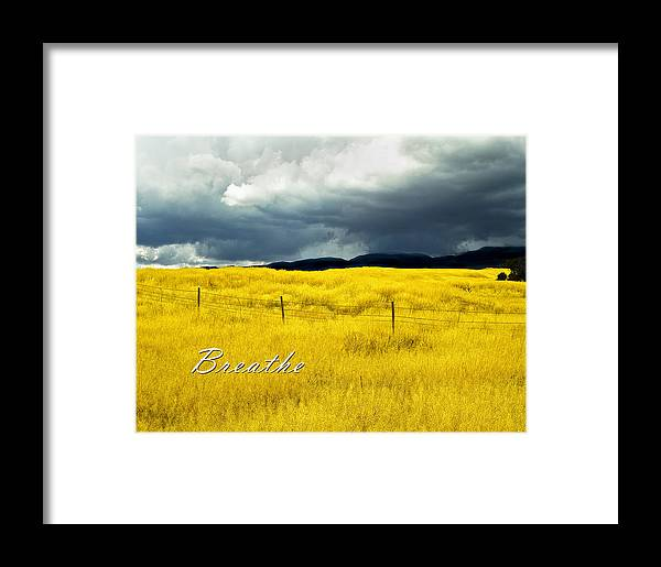 Field Framed Print featuring the photograph Breathe by Lou Novick