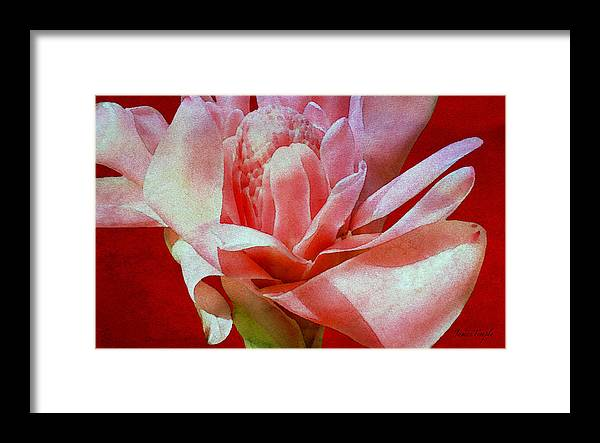 Breathless Framed Print featuring the digital art Breathless Digital Watercolor by James Temple