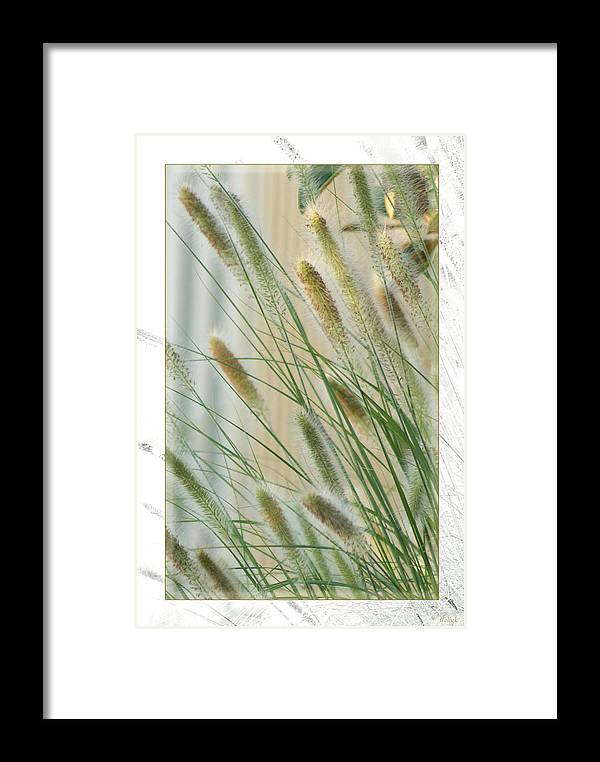 Floral Framed Print featuring the photograph Breeze by Holly Kempe
