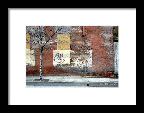 Brick Walls Framed Print featuring the photograph Brick Wall 3 Of Four by Walter Oliver Neal