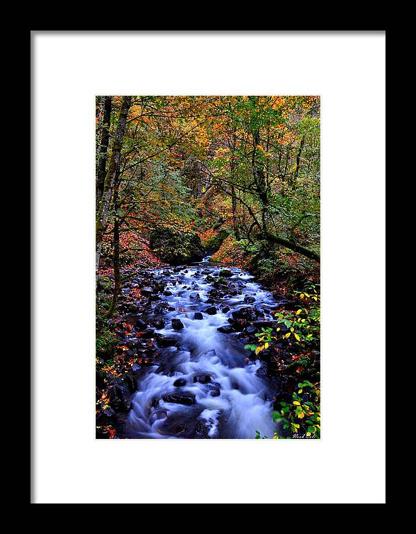 Stream Framed Print featuring the photograph Bridal Veil Creek by Noah Cole