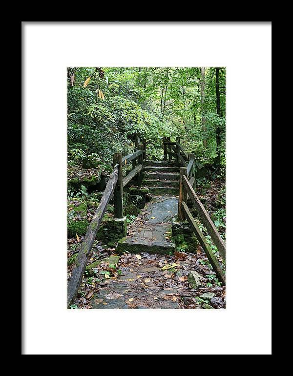 Bridge Framed Print featuring the photograph Bridge Of Dreams by Walt Reece