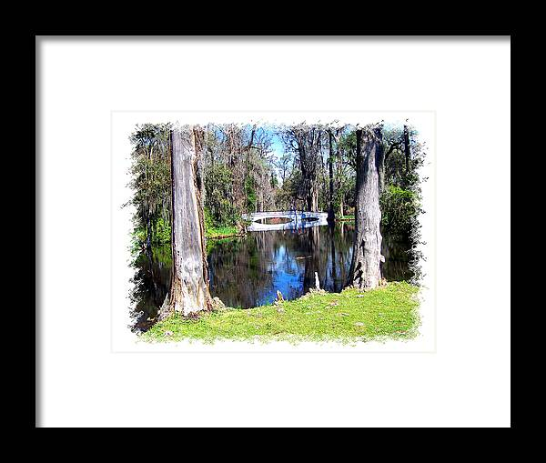 Bridge Framed Print featuring the photograph Bridge Over Pond by Ralph Perdomo