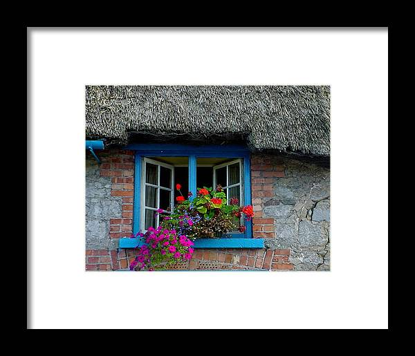 Adare Framed Print featuring the photograph Bright Blooms by PJ Cloud
