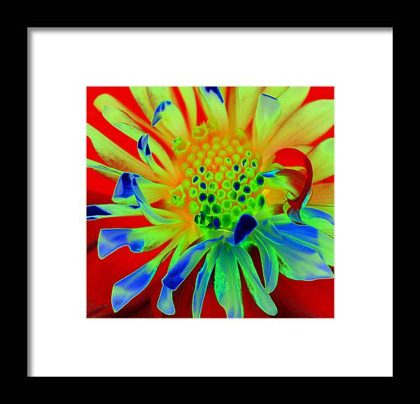 Diane Berry Framed Print featuring the painting Bright Flower by Diane E Berry