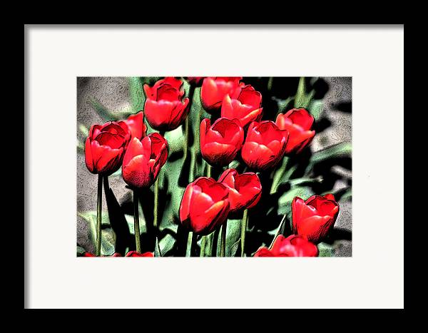 Red Framed Print featuring the photograph Brilliant Tulips Dp22 by Mary Gaines
