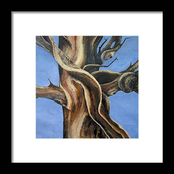 Bristlecone Framed Print featuring the painting Bristlecone Tree No.4 by Wanda Pepin