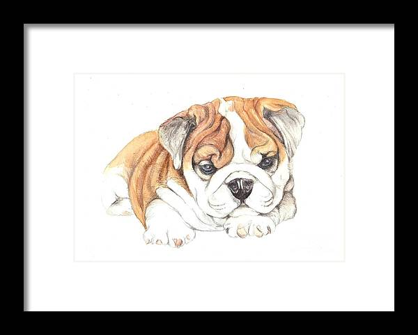 Brittish Framed Print featuring the painting British Bulldog Puppy by Morgan Fitzsimons
