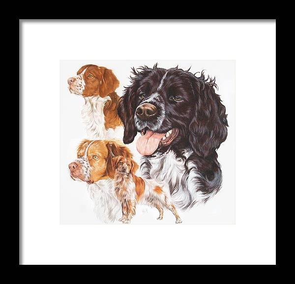 Sporting Group Framed Print featuring the mixed media Brittany Spaniel by Barbara Keith